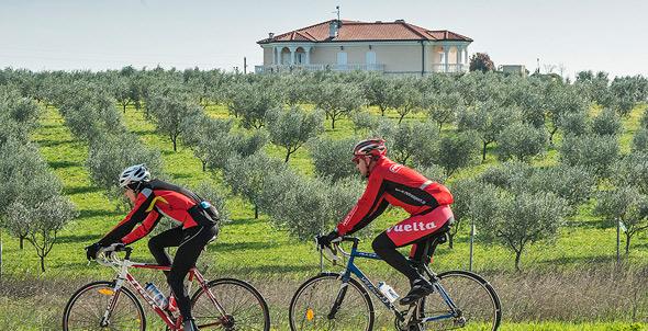 road-bike-istria