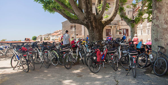buje-istra-bike