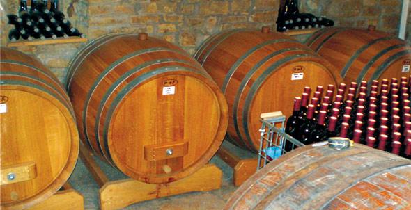 buje-wine