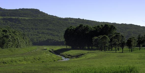 Mirna-River-Valley