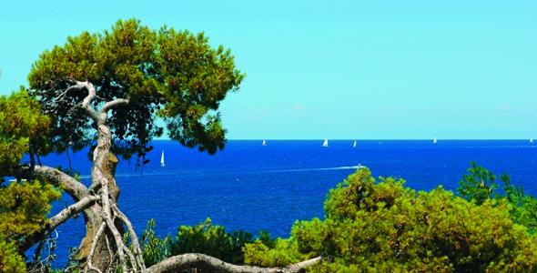 Sailing_Istria