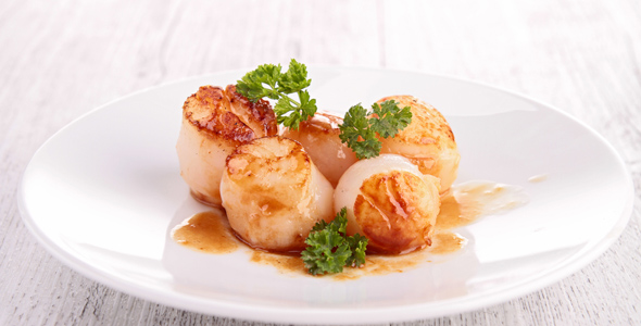 Scallops_Northwestern_Istria