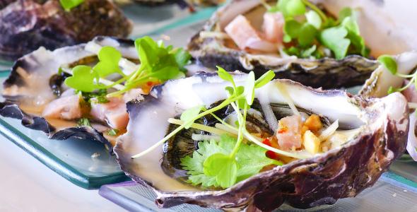 Oysters_Northwestern_Istria
