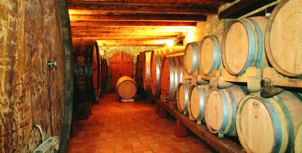 Wine_Cellars_Open_Doors_Day_Northwestern_Istria