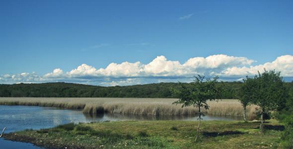 NW-Istria-Activities-for-Seniors-birdwatching