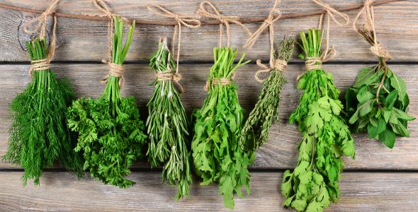 COI-healthy-life-herbs