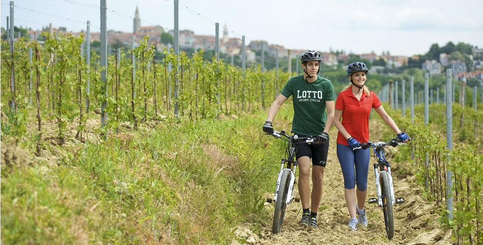 sport_bike