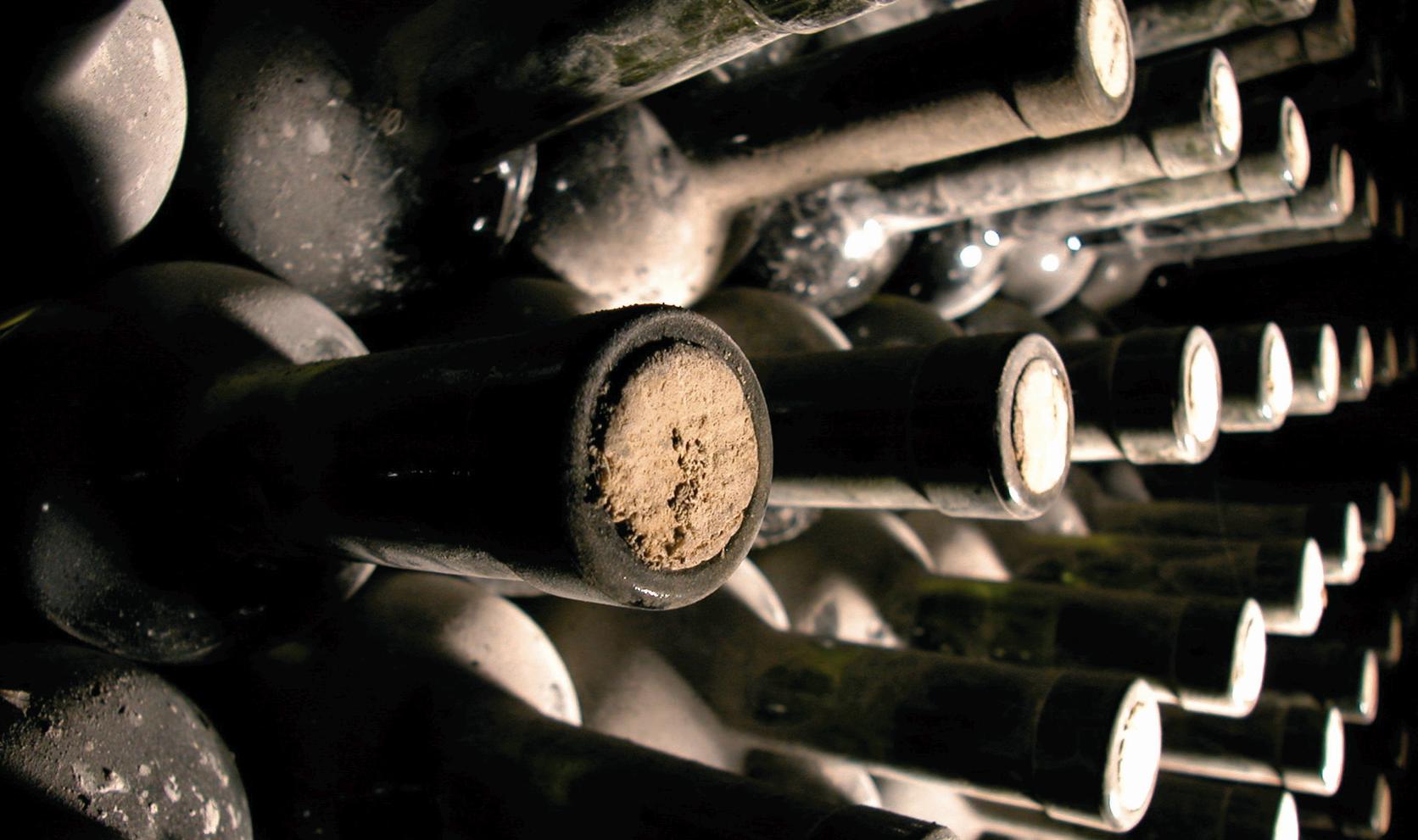 gourmet-wine-vino-vino-boce_3