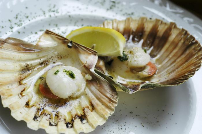 Gourmet-Sea food - Morski plodovi-kapesante-damir-ornela-01