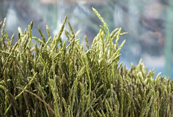 asparagus_text